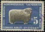 Stamps Uruguay -  Raza ovina ROMNEY MARSH, riqueza agropecuaria uruguaya.