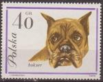 Stamps Europe - Poland -  Polonia 1963 Scott 1117 Sello Nuevo Fauna Perros Boxer Polska Polska Poland Polen Pologne