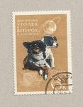 Sellos de Europa - Rusia -  Perros Ugolek y Veterck después viaje espacial
