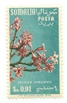Sellos de Africa - Somalia -  Flores (Adenium Somalense)