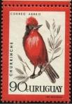 Sellos de America - Uruguay -  Aves autóctonas. El Churrinche.