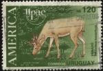 Stamps America - Uruguay -  Fauna americana. Venado de las pampas. Odocolleus bezoarticus.