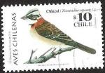Sellos del Mundo : America : Chile : AVES CHILENAS - CHINCOL