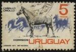 Sellos de America - Uruguay -  El caballo Criollo.