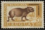 Sellos de America - Uruguay -  Carpincho ó capibara. Hydrochoerus hydrochaeris.