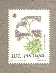 Sellos de Europa - Portugal -  Limonium multiflorum