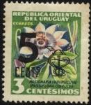 Stamps America - Uruguay -  Flor del Mburucuyá. Passiflora coerulea. 1954 3 centésimos. Sobreimpreso