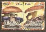 Stamps Peru -  Hongos