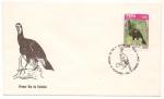 Sellos de America - Perú -  Fauna del Perú