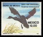 Stamps America - Mexico -  Fauna de México - Pato Real Mexicano
