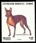 Stamps Mexico -  Exposición Mundial Canina