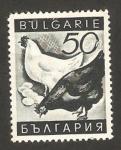 Sellos del Mundo : Europa : Bulgaria : propaganda a favor de los productos nacionales, las gallinas