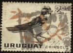 Stamps Uruguay -  Aves autóctonas. El chingolo, chincol, cachilo, copetón o chesy hasy ('Zonotrichia capensis') es un