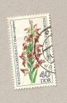 Sellos de Europa - Alemania -  Planta Orchis coriophora