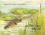 Stamps : America : Brazil :  Serie Pantanal - Leporinus macrocephalus