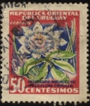 Stamps Uruguay -  Flor de Pasionaria ( Mburucuyá ). Passiflora coerulea..