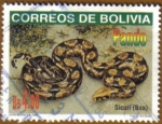 Sellos de America - Bolivia -  Sicurí (BOA)