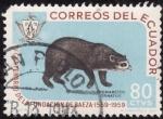 Sellos de America - Ecuador -  IV Centenario de la fundacion de Baeza(OSO DE CARA BLANCA)