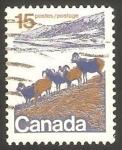 Stamps : America : Canada :  472 - Carneros de la región montañesa del oeste canadiense