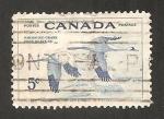 Sellos de America - Canadá -  grullas blancas