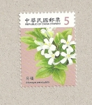 Sellos de Asia - Taiwán -  Murraya paniculata