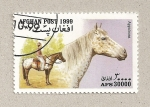 Stamps Afghanistan -  Caballos