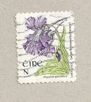 Stamps Ireland -  Flor Pinguicola grandiflora