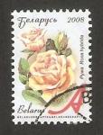 Stamps Europe - Belarus -  628 - rosa, flor de jardín
