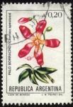 Sellos de America - Argentina -  Flor de Palo Borracho. Chorisia speciosa.