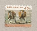 Stamps Australia -  Canguros