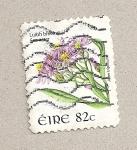 Sellos de Europa - Irlanda -  Flor Aster tripodium
