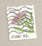 Stamps Ireland -  Flor Aster tripodium