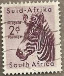 Stamps : Africa : South_Africa :  Cebra