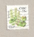 Sellos de Europa - Irlanda -  Planta Umbilicus rupestris