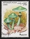 Stamps Afghanistan -  SETAS-HONGOS: 1.100.023,01-Stropharia aeruginosa  -Dm.998.11-Mch.1763-Sc.1472