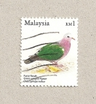 Stamps Asia - Malaysia -  Ave Chalcophaps indica