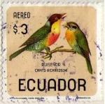 Stamps Ecuador -  Ruiseñor