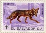 Stamps El Salvador -  coyote