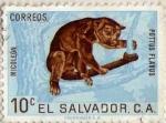 Stamps El Salvador -  micoleon
