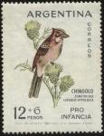 Sellos de America - Argentina -  Emisión de sellos PRO INFANCIA, ave autóctona. Chingolo - zonotrichia capensis hypoleuca -