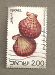 Stamps Israel -  Conchas
