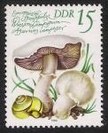 Stamps Germany -  SETAS-HONGOS: 1.152.023,02-Agaricus campestris -Dm.980.81-Y&T2212-Mch.2553-Sc.2139