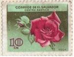 Stamps : America : El_Salvador :  Rosa