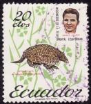 Stamps Ecuador -  ARMADILLO