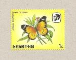 Sellos de Africa - Lesotho -  Mariposa Danaus chrisypus