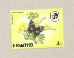 Stamps Africa - Lesotho -  Mariposa  Junonia oenone