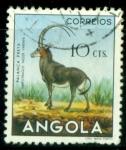 Sellos del Mundo : Africa : Angola :  Hipotrago negro