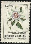 sellos de America - Argentina -  Flor de Pasionaria ( Mburucuyá ). Passiflora coerulea.