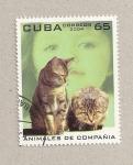 Sellos de America - Cuba -  Animales de compañía