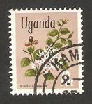 Stamps : Africa : Uganda :  flor carissa edulis